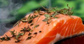 Saumon riche en acide gras Omega 3