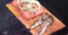 cedar plank salmon & sardines on Barbecue