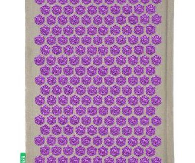 champ de fleurs naturel violet