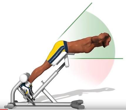 Banc lombaire & exercice de musculation du dos