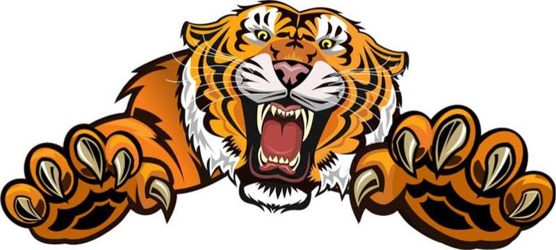 Tigre attaque causant un coup de stress