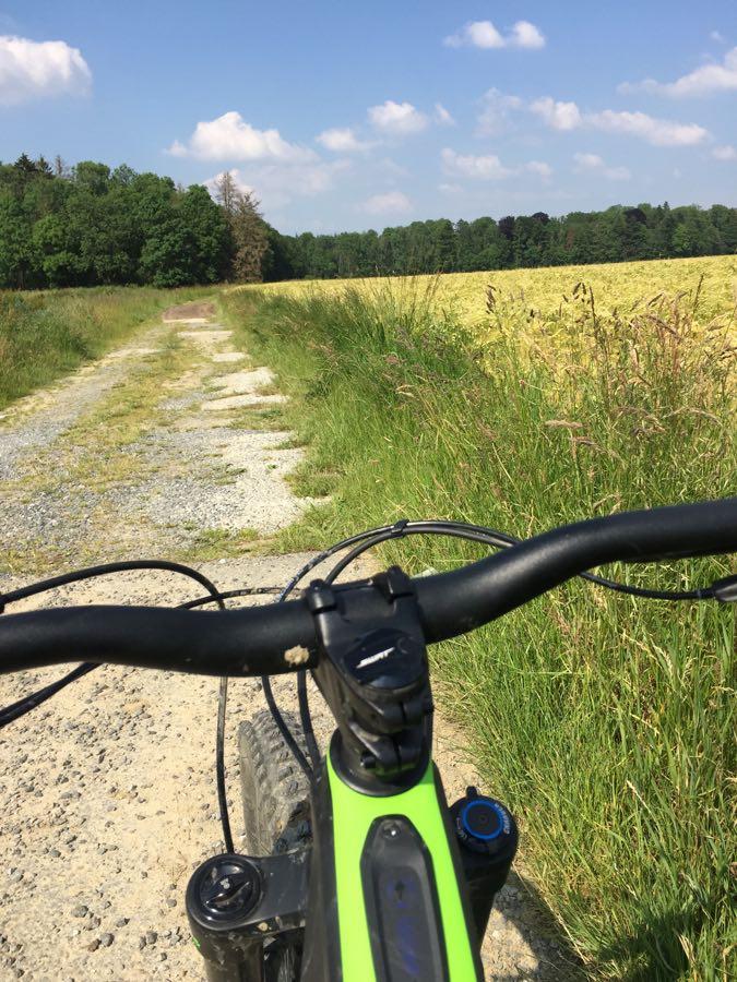 Mon Specialized Turbo Levo Expert: le vélo idéal pour le mal de dos