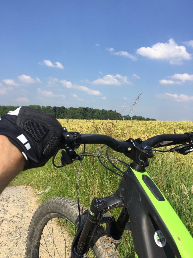 Le vélo ideal pour le mal de dos: Specialized Turbo Levo Expert