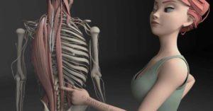 Mal de dos musculaire: muscles profonds du dos