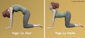 Etirement yoga pour hernie discale lombaire: la pose chat / vache