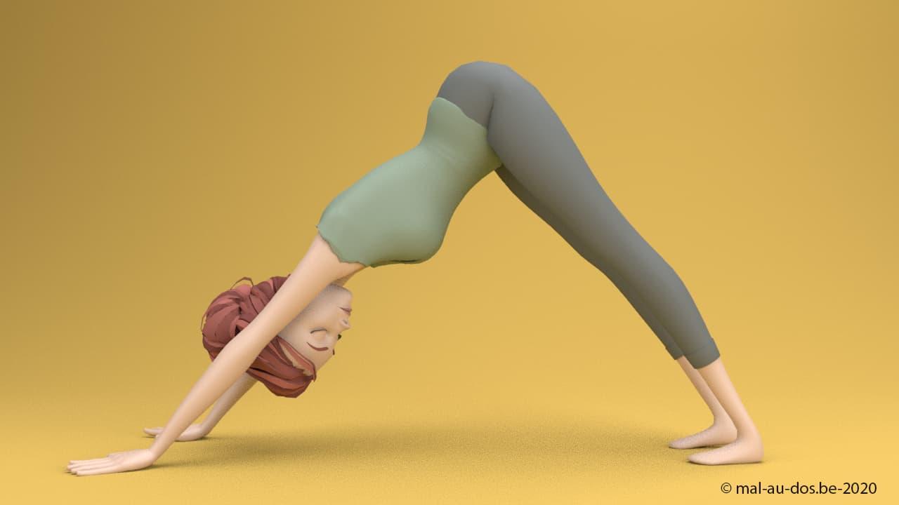 Yoga pour le dos: posture du chien tete en bas
