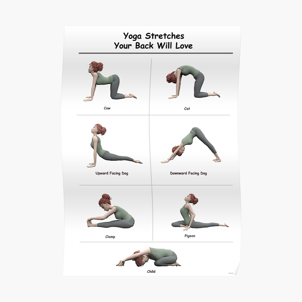 Yoga poster 7 stretches for your back